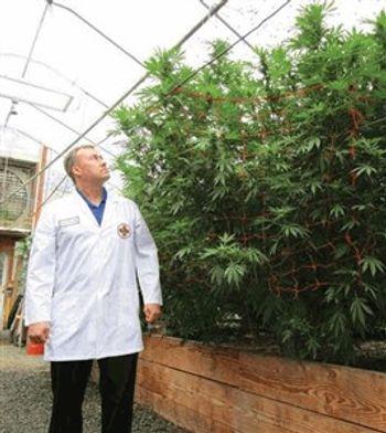 Shimadzu to Showcase Cannabis Testing Technology at Spring 2016 Marijuana Business Expo