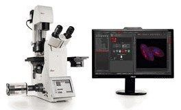 Leica sCMOS microscope camera for imaging live cells under near-native conditions