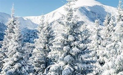 Climate and hydrology studies leveraging ASD VNIR spectral snow albedo measurements