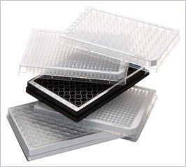 EPPENDORF - Microplate
