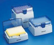 EPPENDORF - epT.I.P.S. Box pipette tips