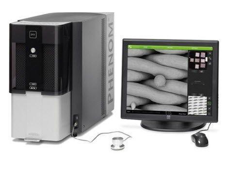 Phenom-World - Pro Desktop SEM