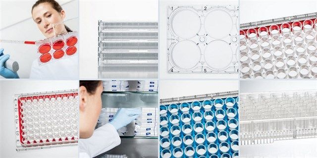 EPPENDORF - Cell Culture Plates