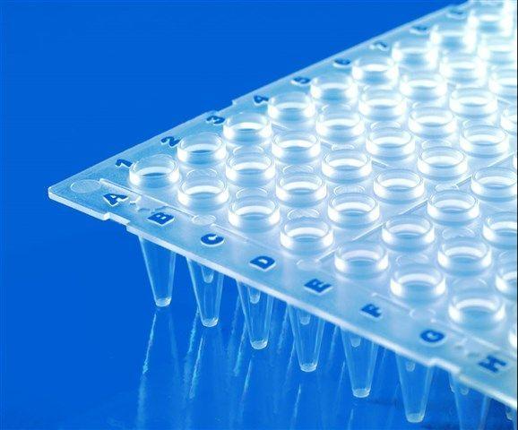 BRAND - PCR Plates