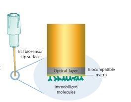 ForteBio - Dip and Read™ Biosensors and Assays