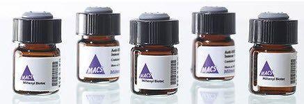Miltenyi Biotec - MACSPlex Exosome Kit, human