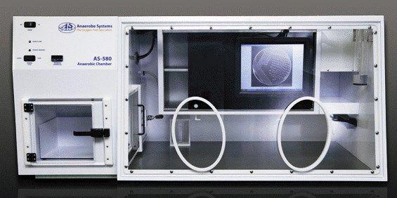 Anaerobe Systems - Anaerobe Chamber AS-580