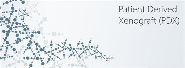Horizon - Patient Derived Xenograft (PDX)