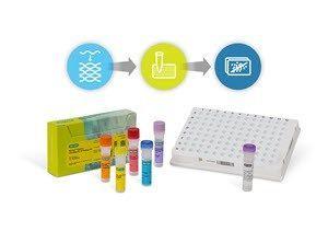 Bio-Rad Laboratories, Inc. - lncRNA RT-qPCR Workflow