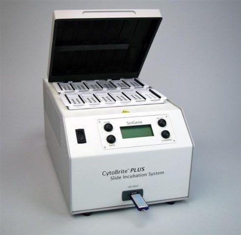 SciGene Corporation - CytoBrite® PLUS