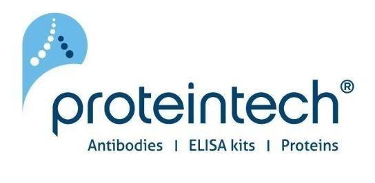 Proteintech Group - HZ-1138