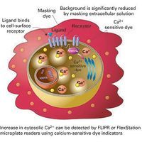 Molecular Devices - FLIPR Calcium Assay Kit